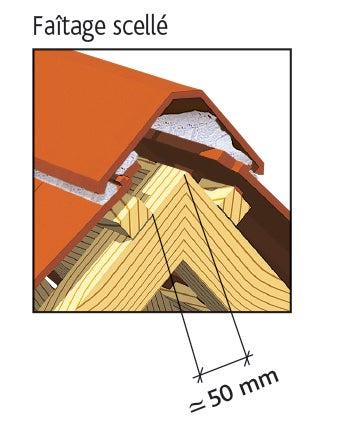 Clay tile ALPHA 10 of EDILIANS : Laced ridge