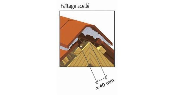 Clay tile ARBOISE RECTANGULAIRE Jacob of EDILIANS : Laced ridge