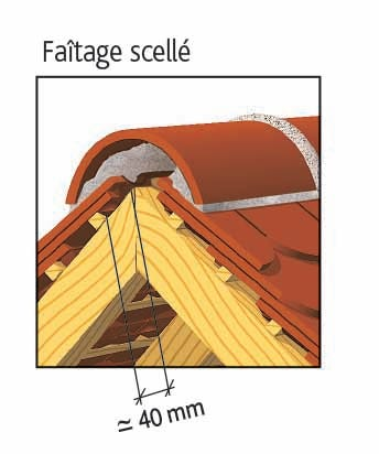 Clay tile PLATE ECAILLE PRESSEE 17x27 Ste Foy of EDILIANS : Laced ridge